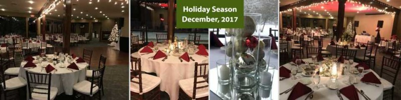 Ann Arbor Christmas Party Venue